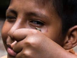 Péninsule Osa enfant grenouille Costa Rica