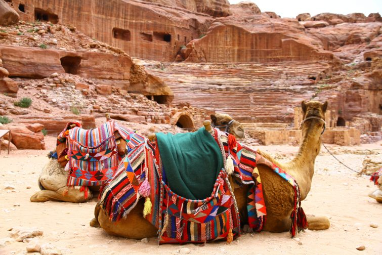 Balade en chameau dans Amman