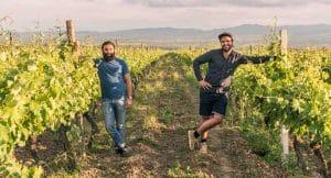decouverte vins georgiens kakhetie