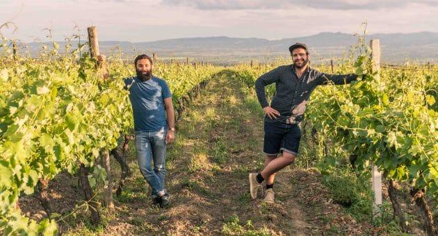 La Kakhétie : à la découverte des vins géorgiens