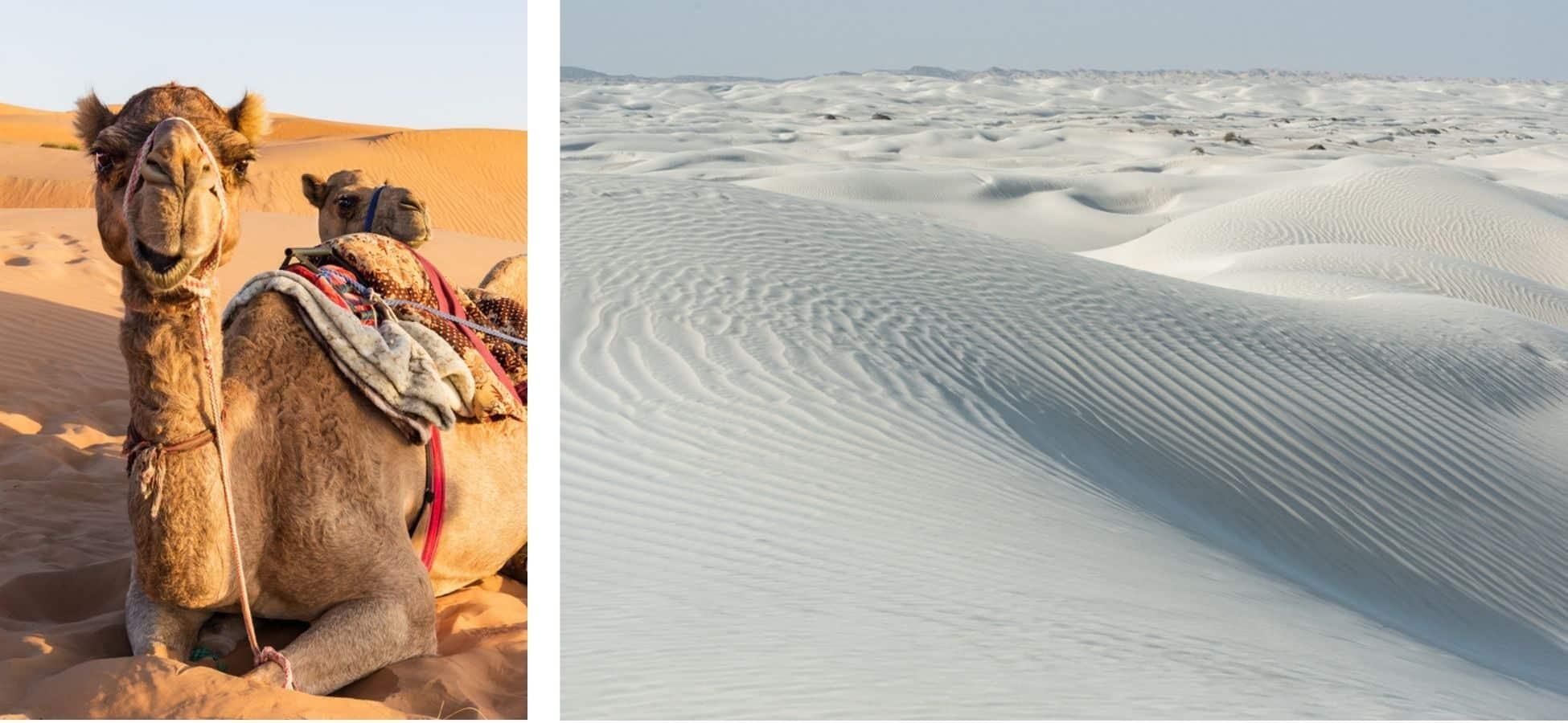 desert-blanc-oman