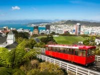 Guide voyage Wellington