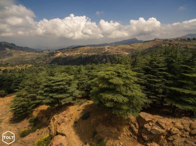 Voyage au Liban : guide pratique