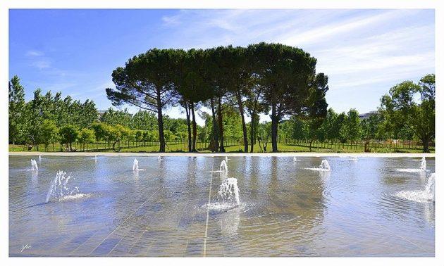 Les 7 meilleurs jardins et parcs où se reposer à Montpellier