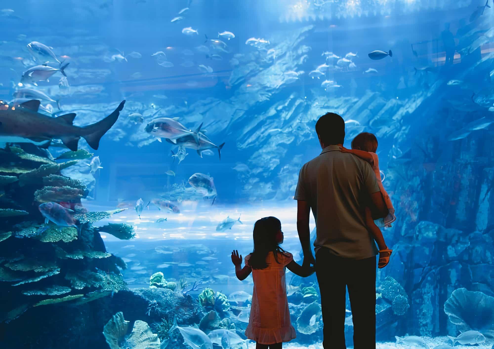 aquarium-montpellier