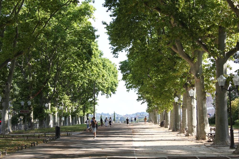 Esplanade Charles de Gaulle, Montpellier
