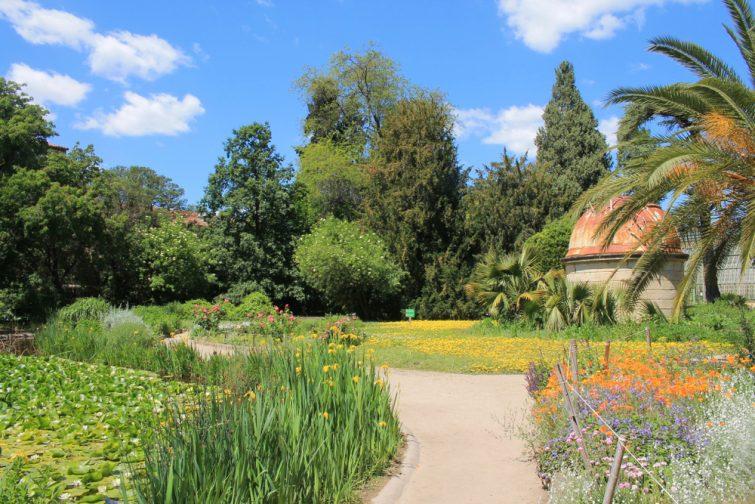 jardin-botanique-montpellier-activites-enfants