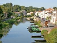 coulon-france