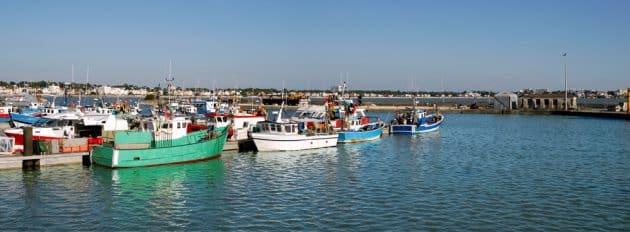 Location de bateau à Royan : comment faire et où ?