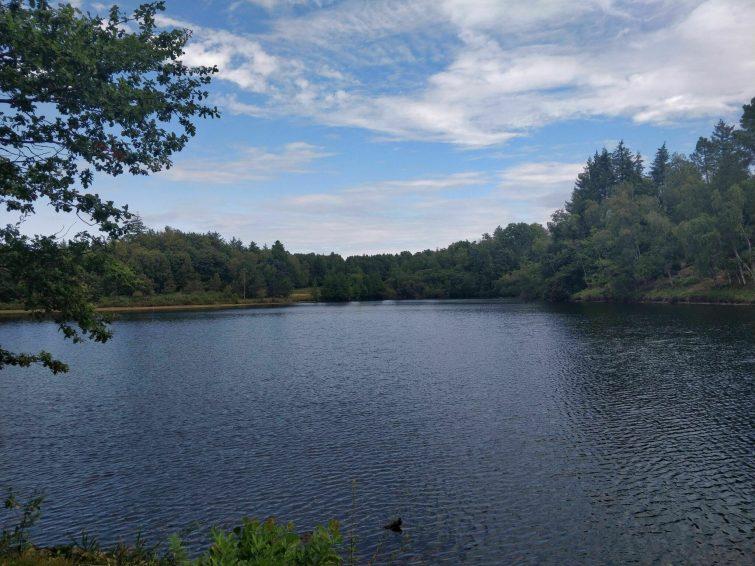 Le chemin des étangs de Marval - randonnées Haute-Vienne