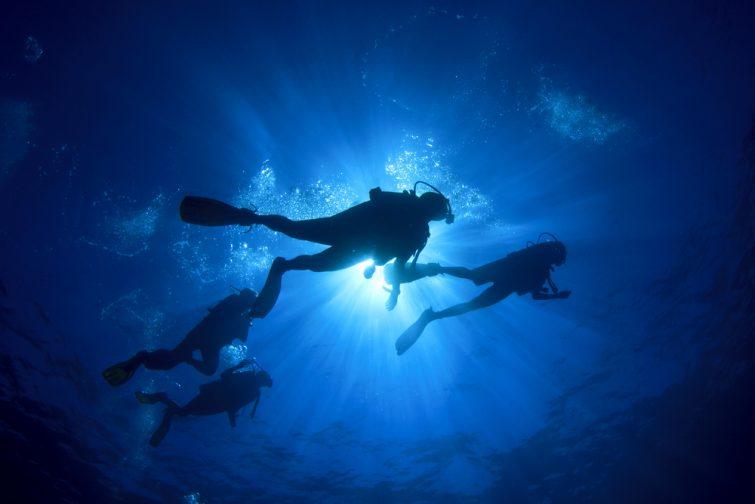 La plongée sous-marine visiter Albufeira