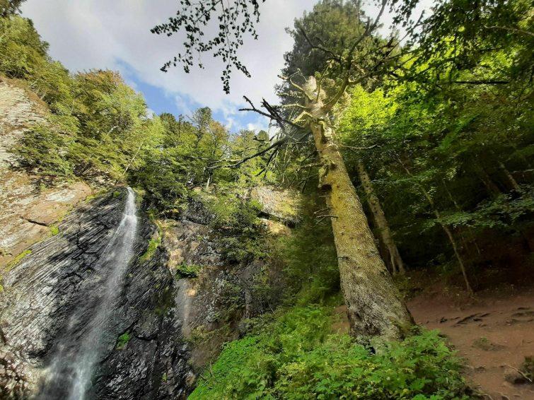 La cascade du Saut du Loup via la cascade du Queureuilh - randonnées Puy-de-Dôme