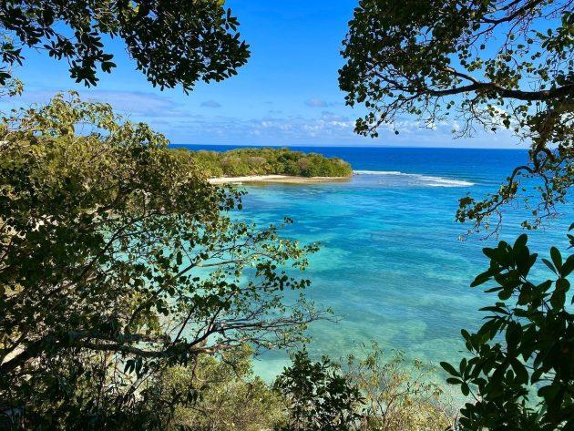 Les 8 plus belles randonnées à faire en Guadeloupe