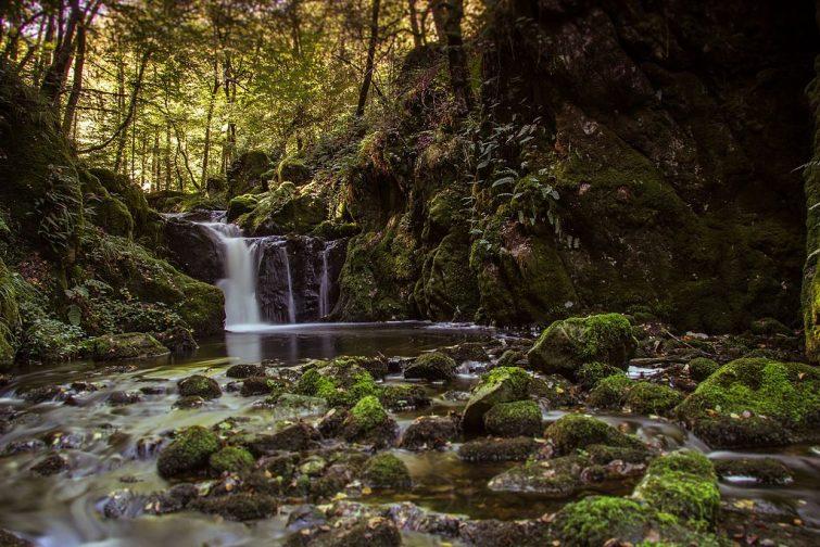 Randonnées Morvan : Les gorges de la Canche et le mont Robert