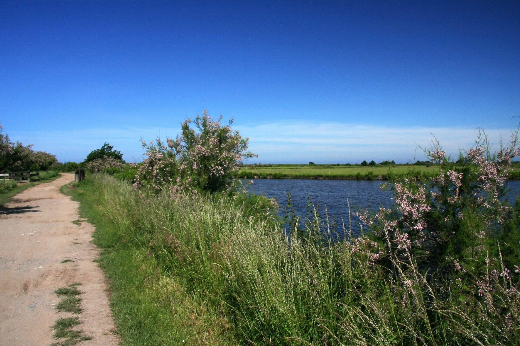 Randonnées Gironde : Le tour du Domaine de Graveyron