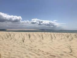 Randonnée Gironde : La boucle de Piraillan à L'Herbe via Le Truc Vert