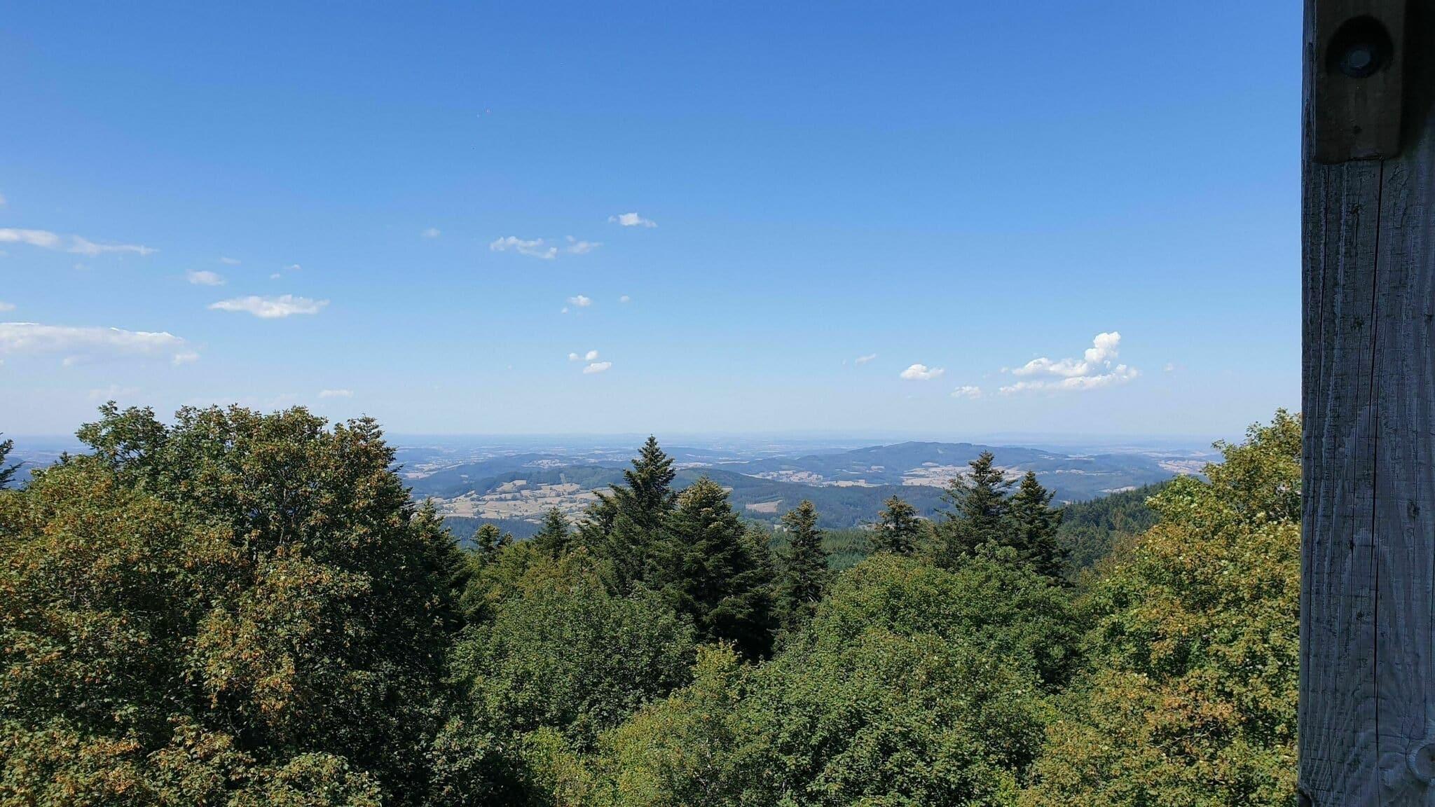 Le mont Saint-Rigaud