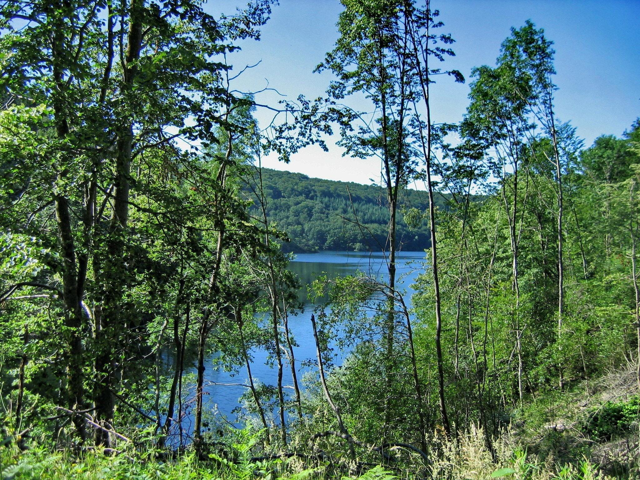 Randonnée Tarn : Le tour du lac des Cammazes