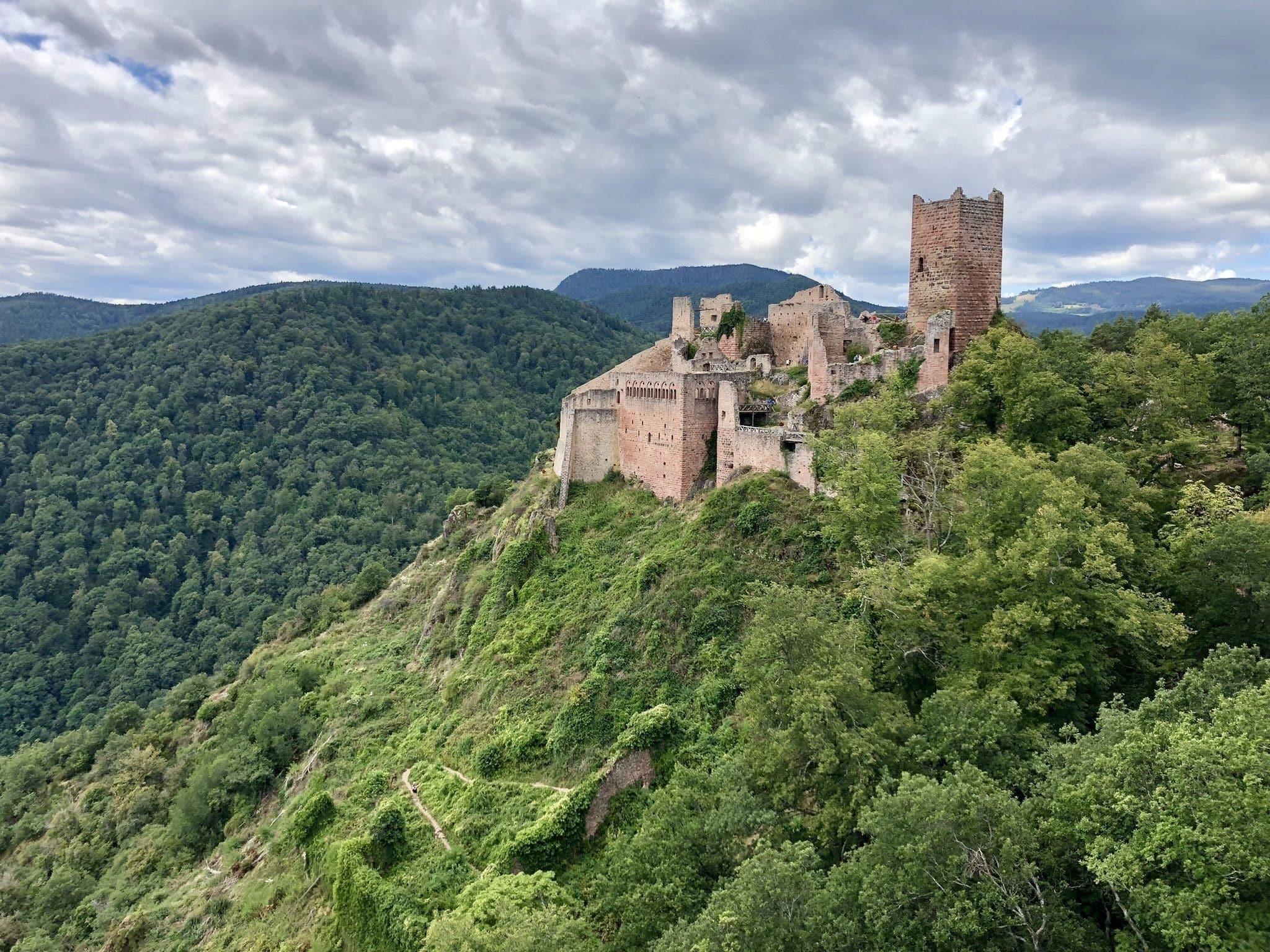 Randonnée Vosges : Les trois châteaux de Ribeauvillé