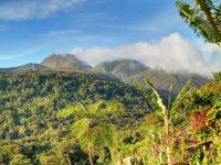 Un lieu unique en Guadeloupe