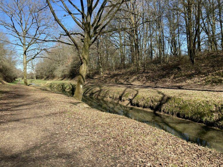 Le Perray - Rambouillet via l'étang de la Tour