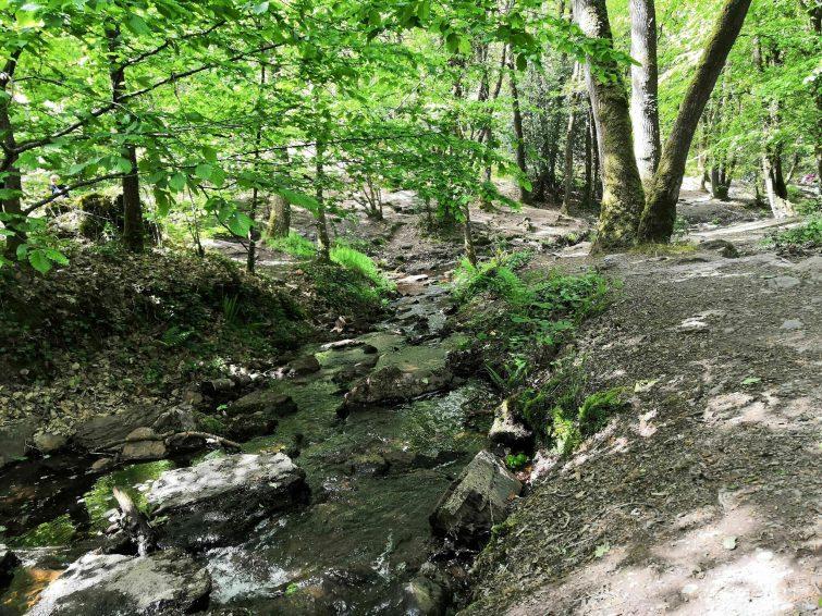 Le Val sans Retour en forêt de Brocéliande