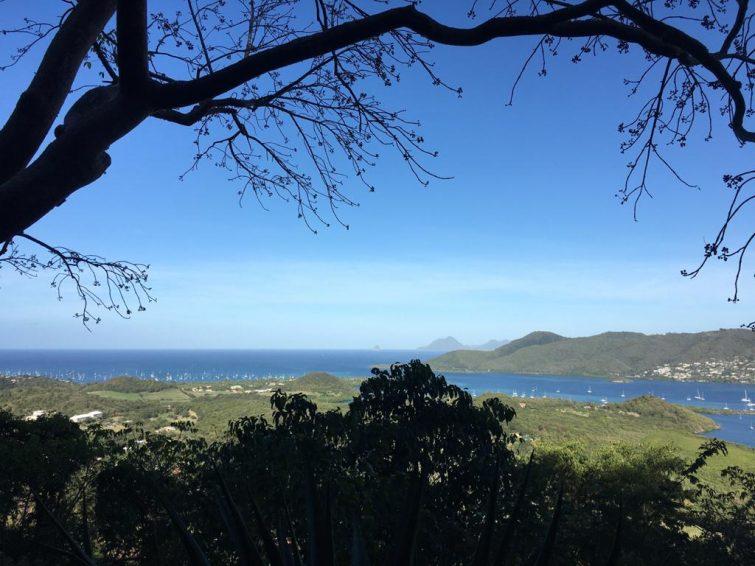 Office de Tourisme SUD Martinique