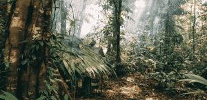« J'ai vécu une semaine dans la jungle au Costa Rica »