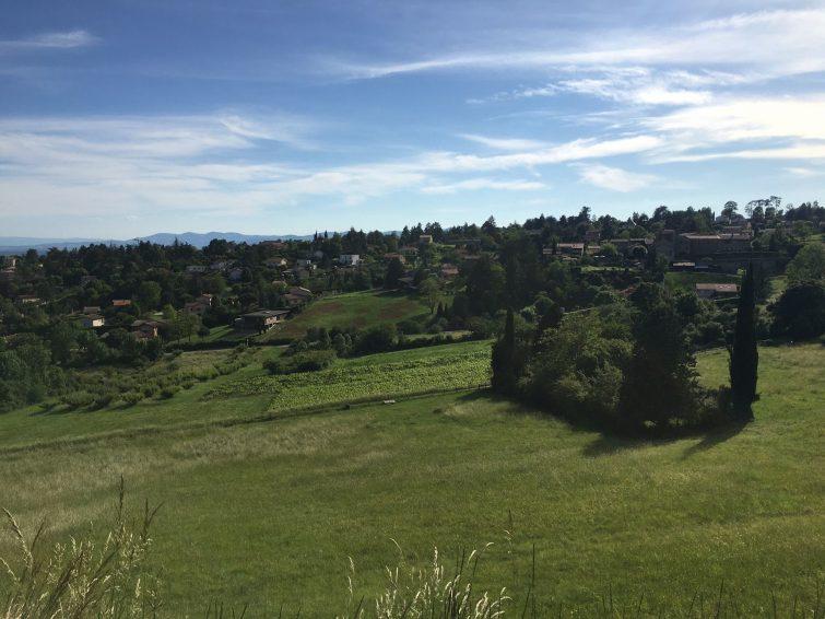 Saint-Didier-au-Mont d'Or-randonnees