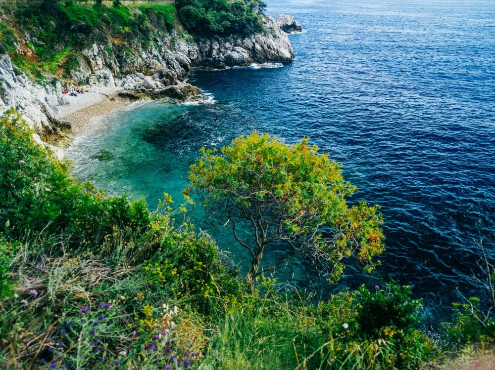 Criques Méditerranée : crique de chemin des douaniers à Saint Jean Cap Ferrat