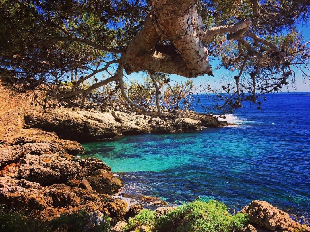Criques Méditerranée : crique Cap d'Ail