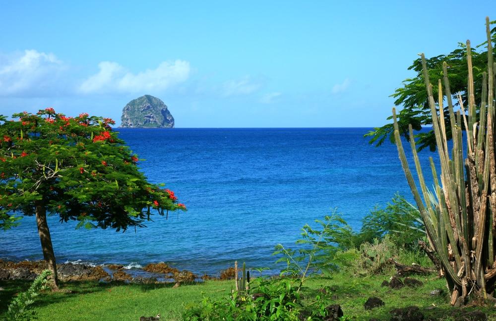 Plongée Martinique : Le Rocher du Diamant