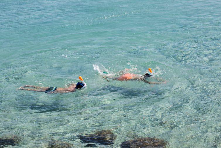 Excursion snorkeling