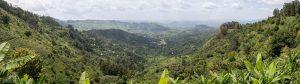 Tourisme au Cameroun