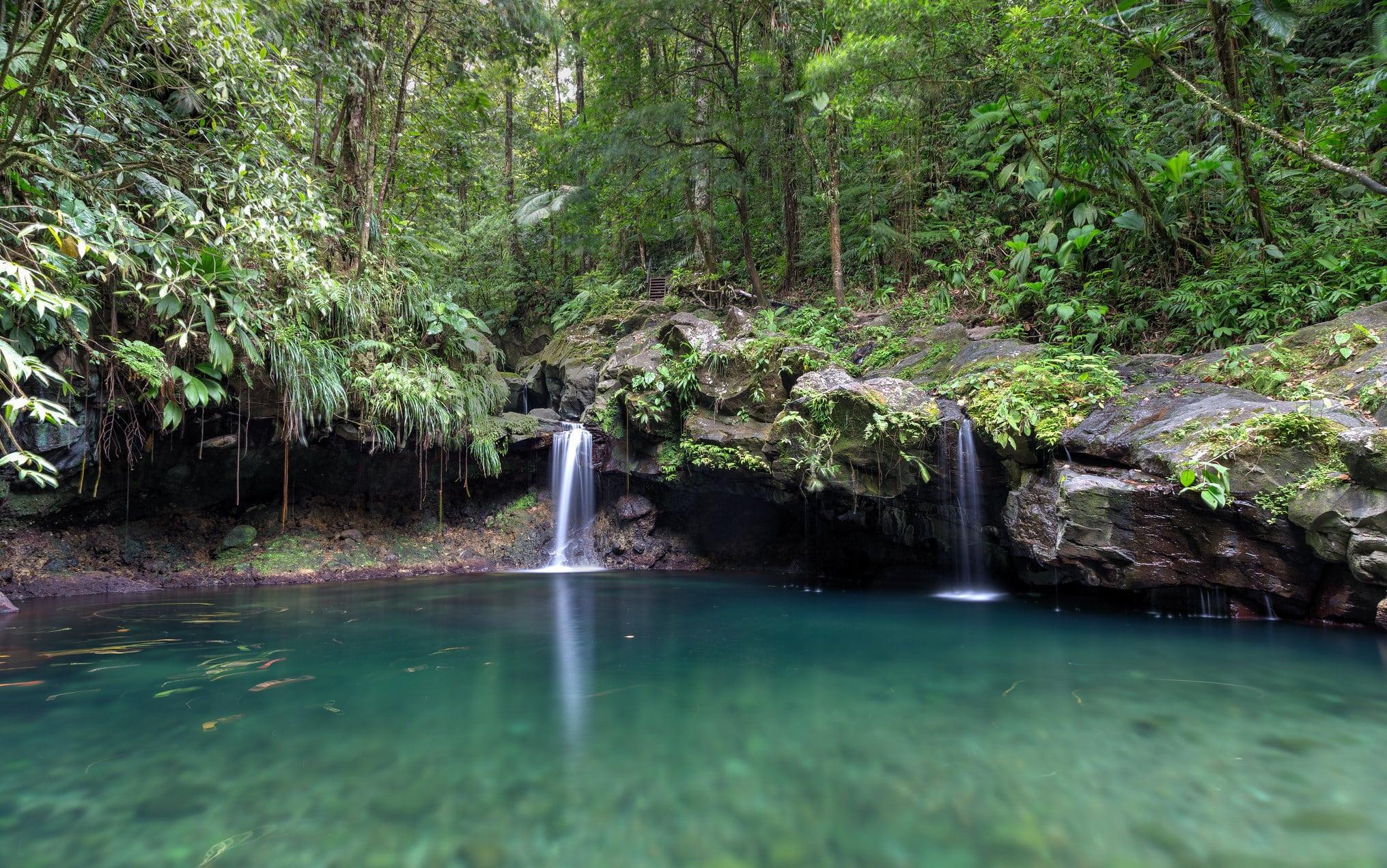 Bassin Paradis - belles cascades de guadeloupe