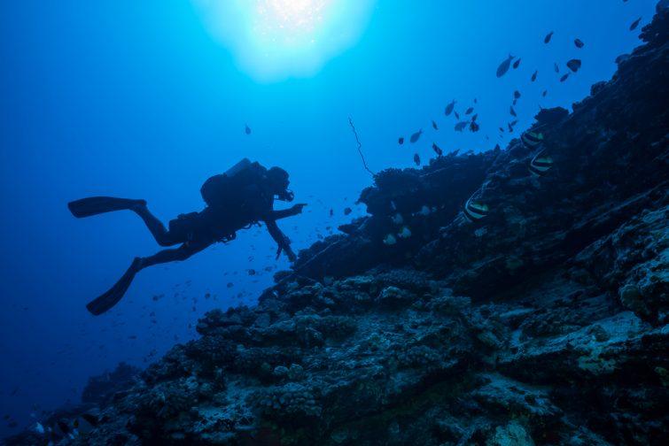 Les autres spots où plonger sur l'île de La Réunion