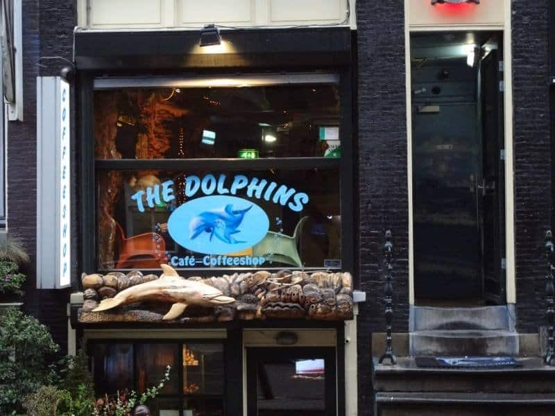 Coffee Shops Amsterdam : The Dolphins Coffeeshop
