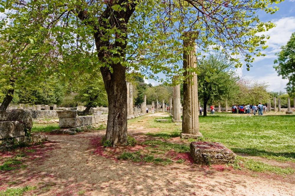 Jardin Botanique olympique