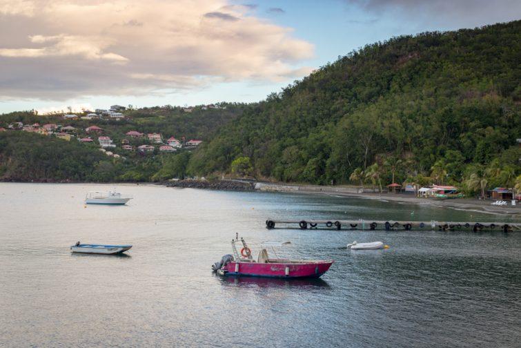 Guadeloupe Réserve Cousteau