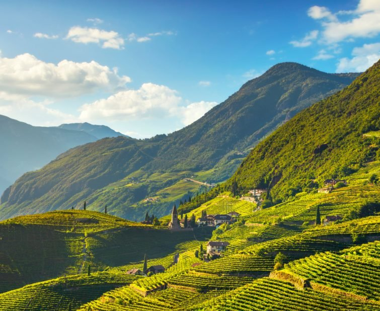 visiter Bolzano : Lagrein vigneti