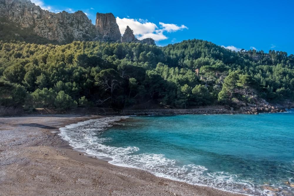 Cala Tuent, verte - plages Majorque