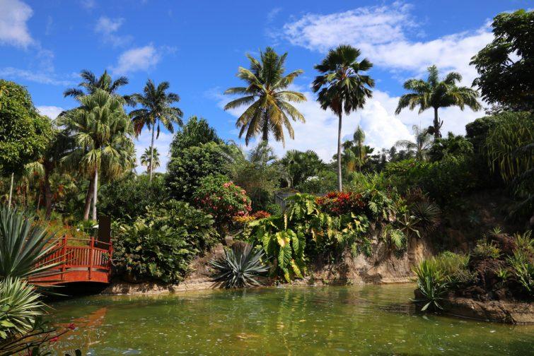 Jardin Botanique - visiter Guadeloupe