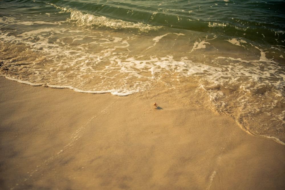 Kigamboni - plages Tanzanie