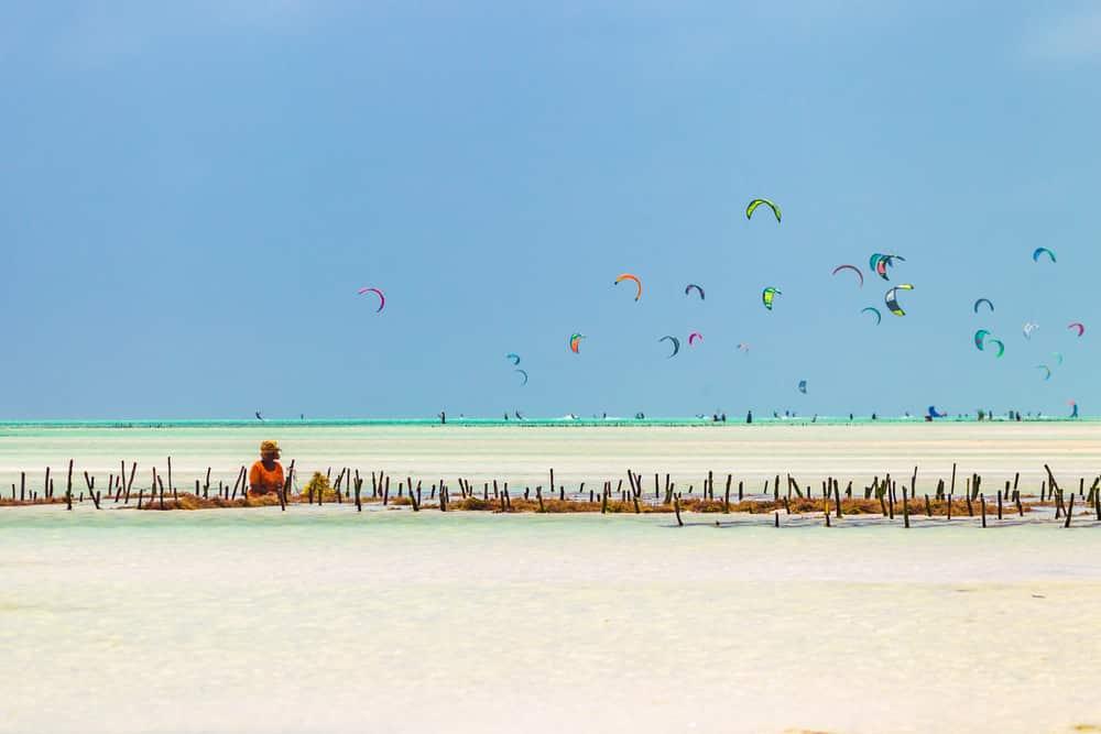 Paje, la sportive - plages Tanzanie