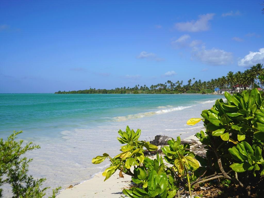 Visiter Zanzibar : Pongwe, plage au calme