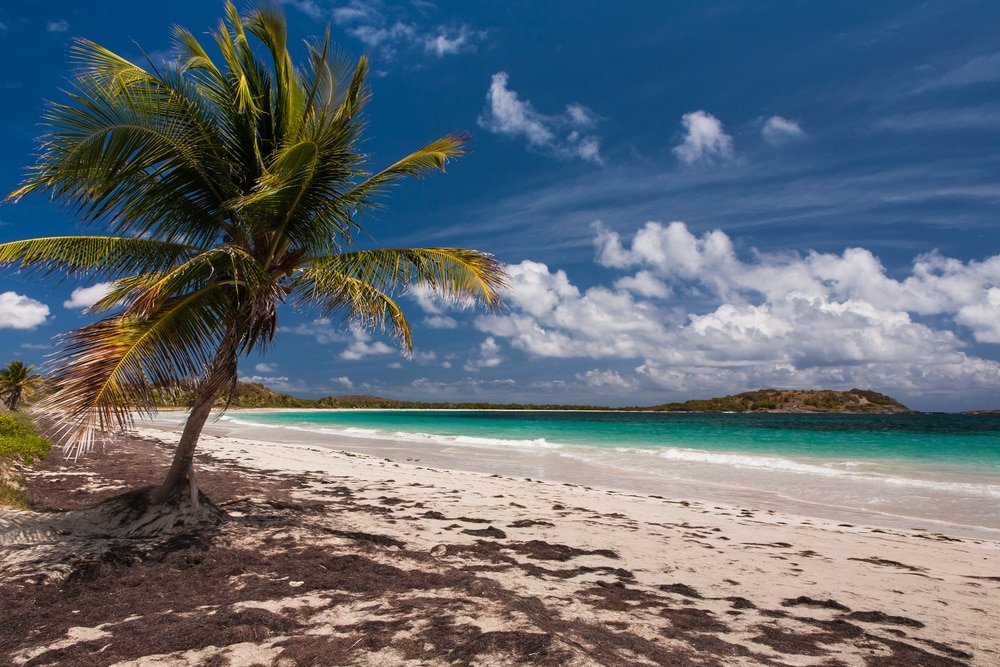 Anse Trabaud - belles plages martinique
