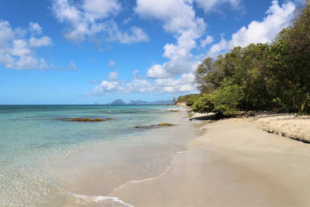 Anse Meunier - belles plages martinique