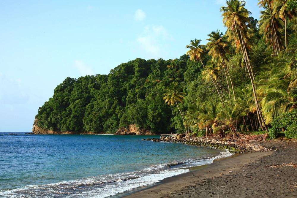 Anse Couleuvre - belles plages martinique