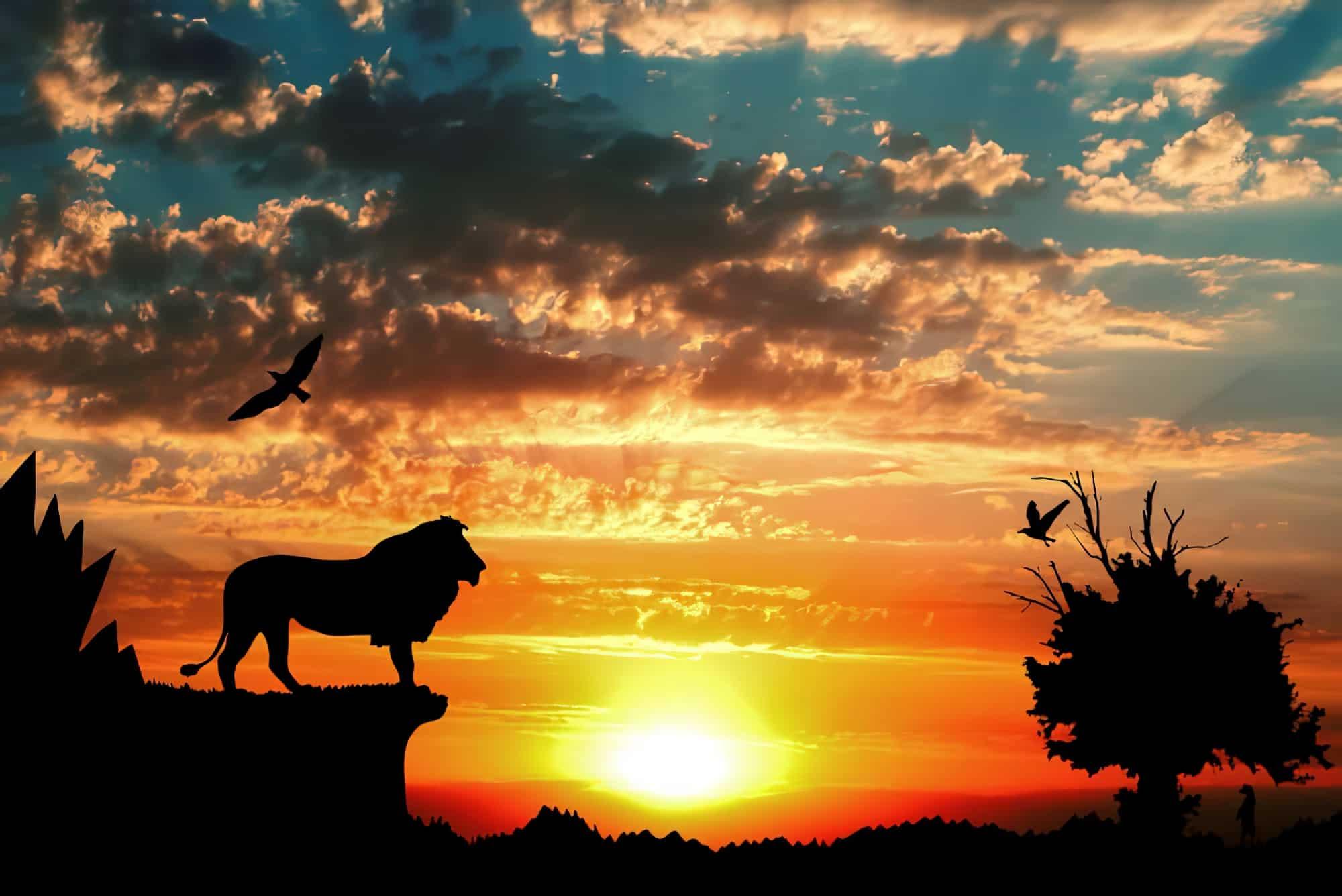 Films apprendre portugais : le roi lion