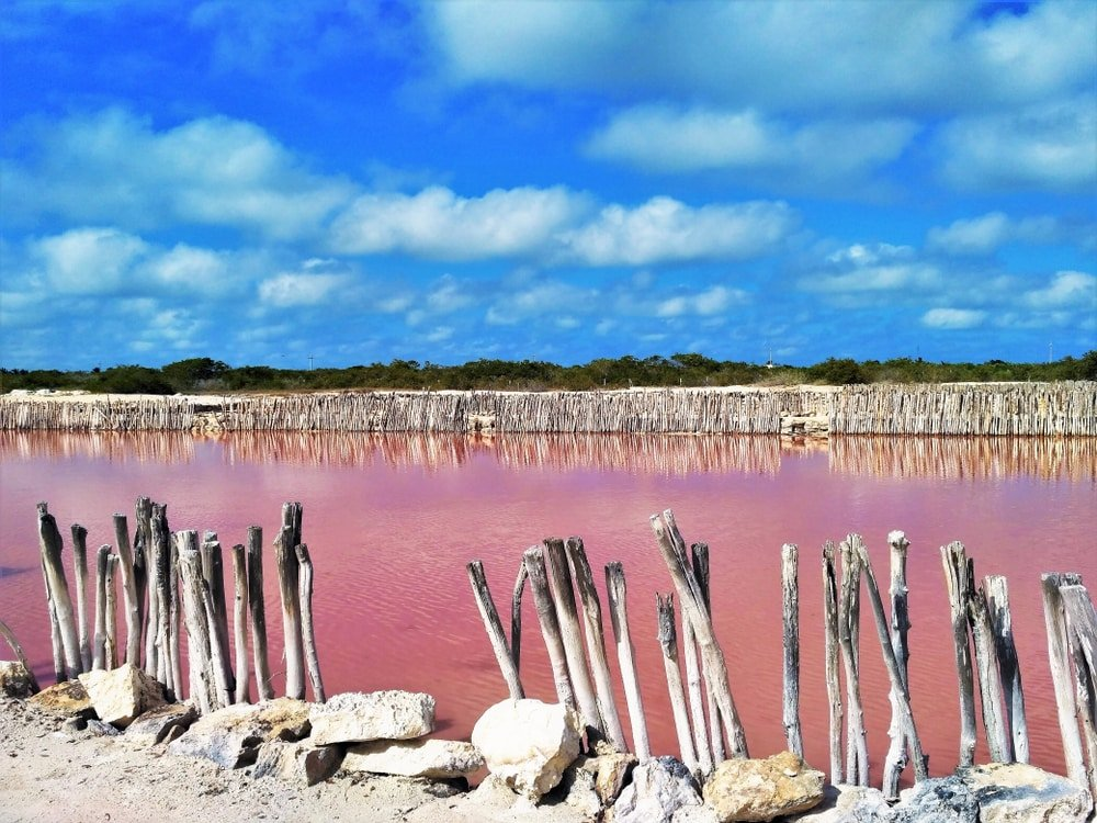 lac de sel rose